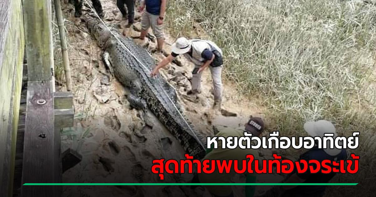 สะพรึงหนัก จระเข้ 4.7 เมตร ถูกจับลากขึ้นฝั่ง ผ่าท้องดูมีช็อก พบชิ้นส่วนศพเด็กชายที่หายไป