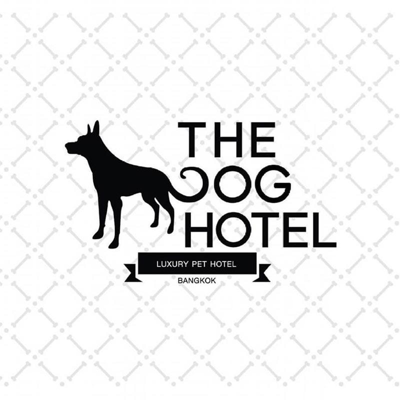 โรงแรมแมว โรงแรมหมา