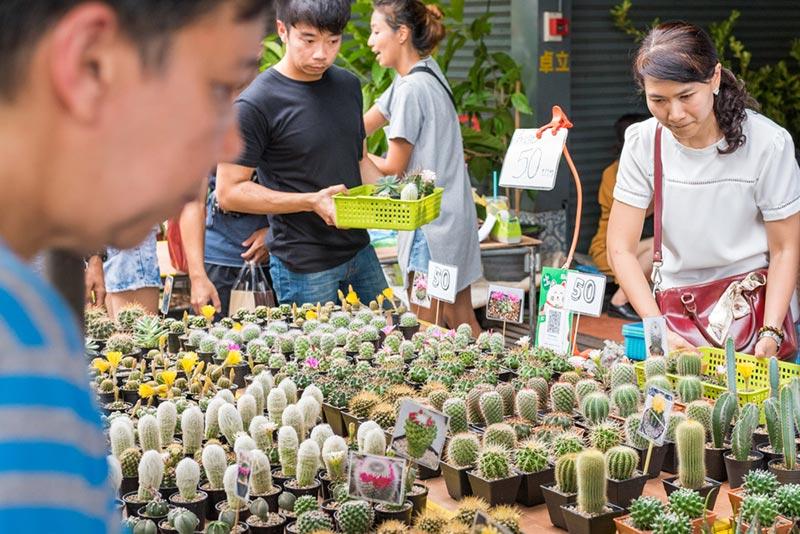 ตลาดต้นไม้